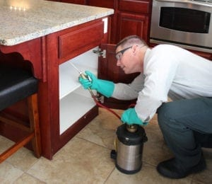 Inspecting cabinet, BJs Consumers Choice Pest Control
